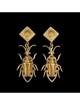 Boucles En Laiton Longhorn Beetle / / Insectes Boucles D'oreilles / / Boucles D'oreilles Bug / / Bright Gold Finition/Lumière/Poids / / Or Rempli De Messages / / Scarabée Bijoux by Etsy