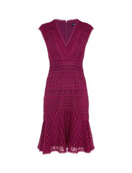 Lace Peplum Dress by Dd219 Fd054 Dc282 Dd014 Dd171