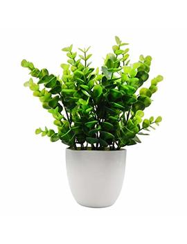 Offidix Mini Plastic Eucalyptus Artificial Plants With Vase For Office Desk, Home And Friends' Gift Fake Plant With Plastic Pots For Home Decoration (White) by Offidix