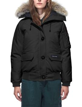 Chilliwack Hooded Down Bomber Jacket With Genuine Coyote Fur Trim by Canada Goose