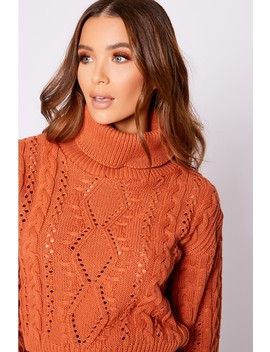 Olivija Rust Roll Neck Cable Knit Jumper by In The Style