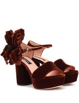 Velvet Plateau Sandals by Rochas