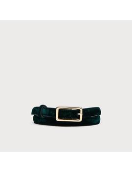 Glenda Ivy Velvet Belts by L.K.Bennett
