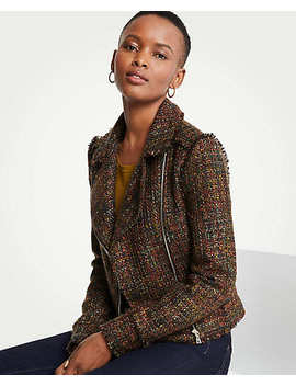 Petite Fringe Tweed Moto Jacket by Ann Taylor