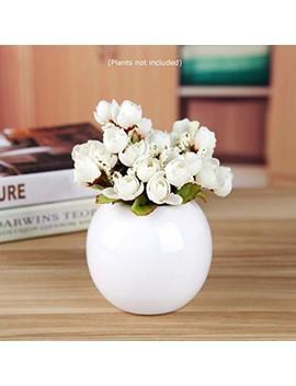 Guo's Cute Plants Vase Decorative Bud Vase Succulent Pots Storage Jars Various 7 Colors (One White) by Guo's