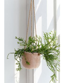 "Dimpled Ceramic 5"" Hanging Planter by Urban Outfitters"