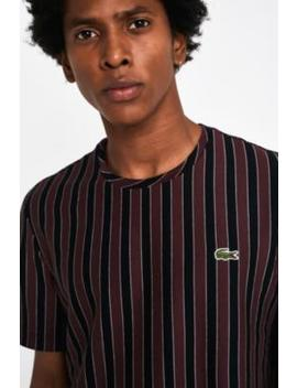 Lacoste Live Burgundy Stripe T Shirt by Lacoste Live