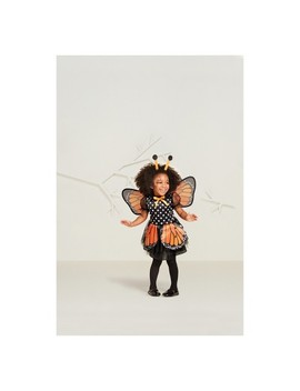 Toddler Girls' Monarch Butterfly Halloween Costume   Hyde And Eek! Boutique™ by Shop This Collection