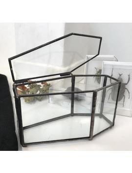 Glass Coffin, Gothic Decor, Gothic Wedding Ring Bearer, Taxidermy Box, Gothic Home Decor, Halloween Horror Decoration, Goth Jewellery Box by Etsy
