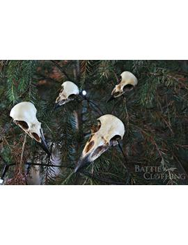 Corvidae Collection Raven Crow Magpie Jackdaw Bird Skull Goth Decor Gothic Decorations Halloween Ornaments by Etsy