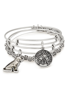 Pawsitive Vibes Set Of 3 by Alex And Ani