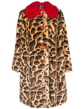 Contrast Collar Leopard Print Coat by Dolce & Gabbana