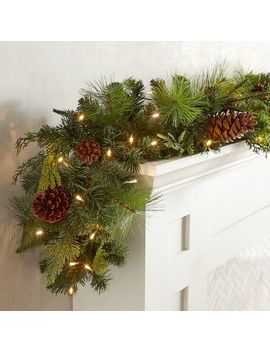 Led Pre Lit Forever Fresh 6' Garland by Pier1 Imports