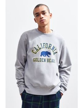 Champion University Of California, Berkeley Golden Bears Crew Neck Sweatshirt by Champion