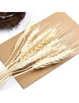 20 Pcs Artificial Autumn Wheat Flower Bouquet Home Wedding Party Diy Decoration by Unbranded