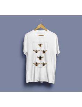 British Bee's Unisex T Shirt   Bee Tshirt, Insect Tshirt, Bee Illustration, Insect Print, Entomology Tshirt, Entomology Print, Vintage Art by Etsy