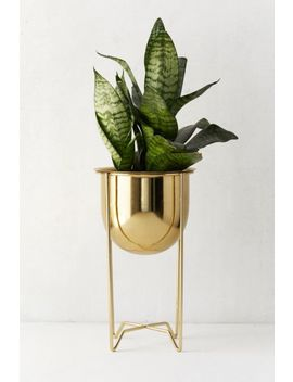 Gilded Bowl Planter + Stand by Urban Outfitters