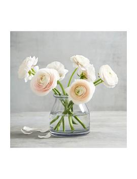 Mini Aurelie Glass Vase by The White Company