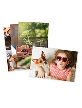 Photo Prints – Matte – Standard Size (4x6) by Amazon