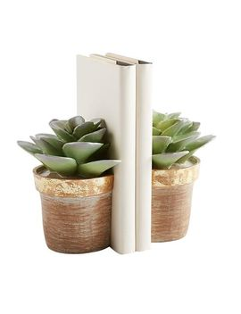 Potted Succulent Bookend Set by Pier1 Imports