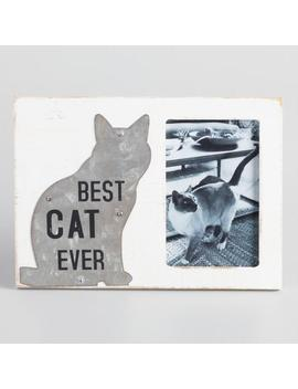 Best Cat Ever Frame by World Market