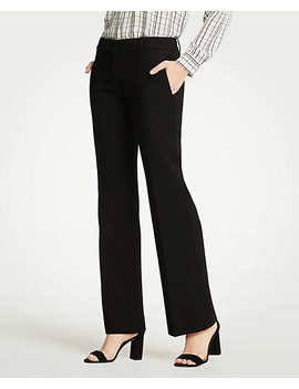 The Madison Trouser by Ann Taylor