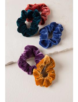 Addie Velvet Scrunchie Set by Francesca's