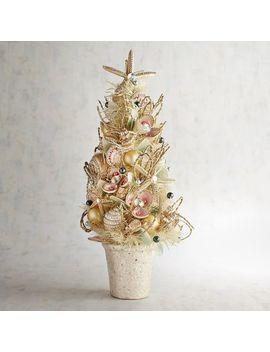 Capiz Coastal Christmas Potted Tree by Pier1 Imports