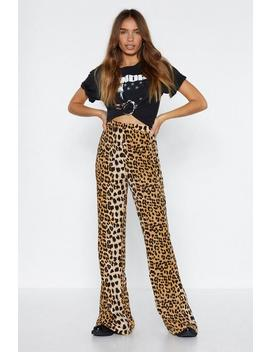 Speed Of Lightning Leopard Pants by Nasty Gal