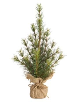 Pine Tree With Burlap Base by Melrose Gifts