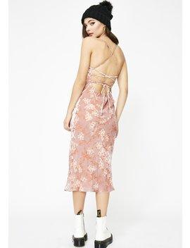Champagne Blossom Velvet Dress by Skylar Madison