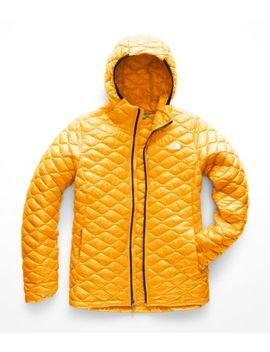 Women's Thermoball Eco Hoodie by The North Face