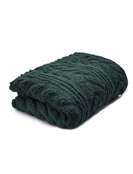 Posh Home Herringbone Cable (50x60) (Green) Embossed Sherpa Throw Blanket by Posh Home