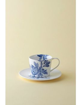 Caskata Arbor Cup And Saucer by Caskata