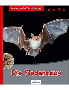 Die Fledermaus (Meine Große Tierbibliothek) by Dr. Jens Poschadel