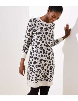 Leopard Sweater Dress by Loft