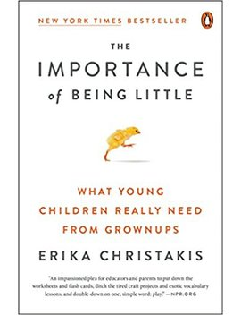 The Importance Of Being Little: What Young Children Really Need From Grownups by Erika Christakis
