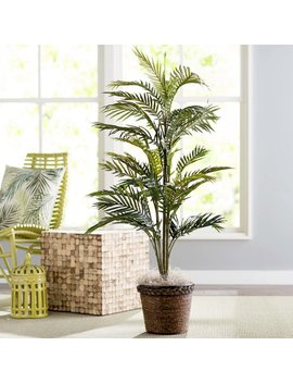 Beachcrest Home Bermudiana Palm Tree In Basket & Reviews by Beachcrest Home