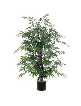 World Menagerie Maple Bush Tree In Round Pot & Reviews by World Menagerie