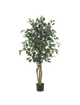 Alcott Hill Parkes Silk Ficus Tree In Pot & Reviews by Alcott Hill