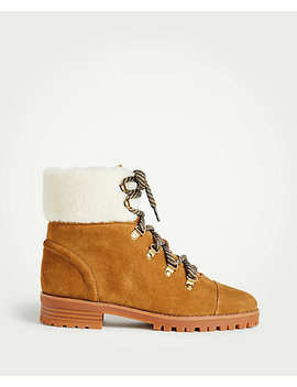 Brock Suede Hiker Boots by Ann Taylor