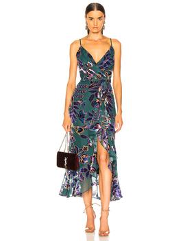 Burnout Velvet Midi Dress by Pat Bo