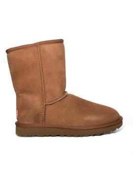 Classic Short Boot Chestnut by Ugg Australia