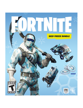Fortnite Deep Freeze Bundle, Warner, Nintendo Switch, 883929662616 by Taketwo Interactive