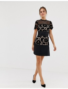 Coast Lace Shift Block Dress by Coast