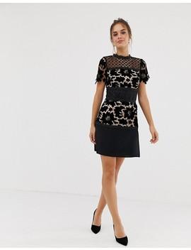 Coast Lace Shift Block Dress by Coast
