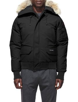 Pbi Chilliwack Regular Fit Down Bomber Jacket With Genuine Coyote Trim by Canada Goose