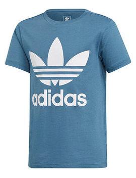 Big Boys Trefoil Graphic Cotton T Shirt by Adidas