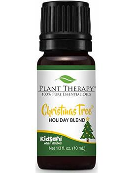Plant Therapy Essential Oil | Christmas Tree Holiday Blend | 100 Percents Pure, Undiluted, Natural, Therapeutic Grade | 10 M L (1/3 Oz) by Plant Therapy