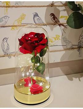 Homeseasons Enchanted Rose, Beauty And The Beast Pre Lit Red Rose In Glass Dome(Metal Base) by Homeseasons